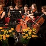 2013-gszpomladanski-koncert_112