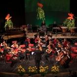 2013-gszpomladanski-koncert_120