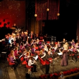 boz. nov. koncert 309 (Medium)